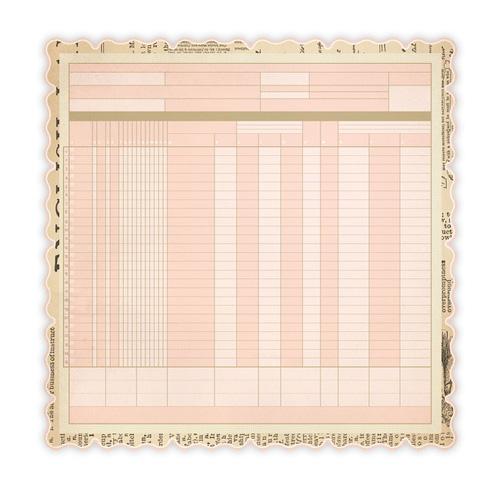 Studio Calico Elementary Pink Ledger Paper