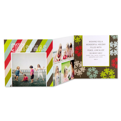 Sheer Collage Holiday Photo Cards