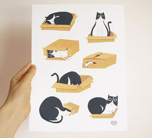 The Cat and the Box Print | Erica Salcedo