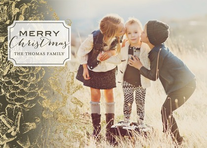 Dusted Pinecones Holiday Photo Cards