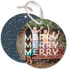 merry-snow-globe-holiday-photo-cards