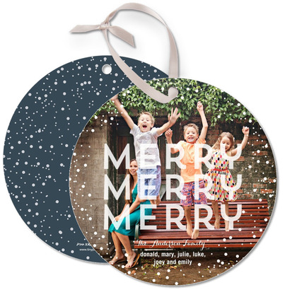 Merry Snow Globe Ornament Photo Cards