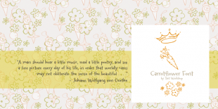 Carrotflower Font by Tart Workshop