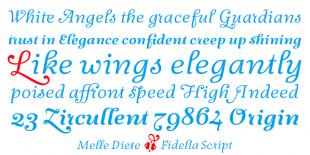 Fidelia Script Font by Melle Diete
