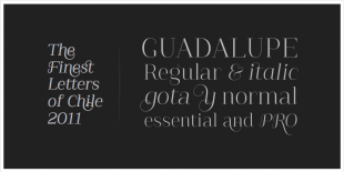 Guadalupe Font by Latinotype