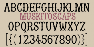 MuskitoCaps Font by Robert Schenk