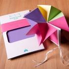 Build-It-Yourself Letterpress Petal Fold Book | Igloo Letterpress