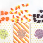 "Free Printable ""Trick or Treat Yo Self"" Labels at Damask Love"