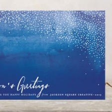 Indigo Snow Business Holiday Cards by Pistols