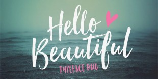 Hello Beautiful Font by Nicky Laatz