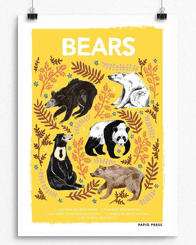 Bears Natural History Print by Papio Press
