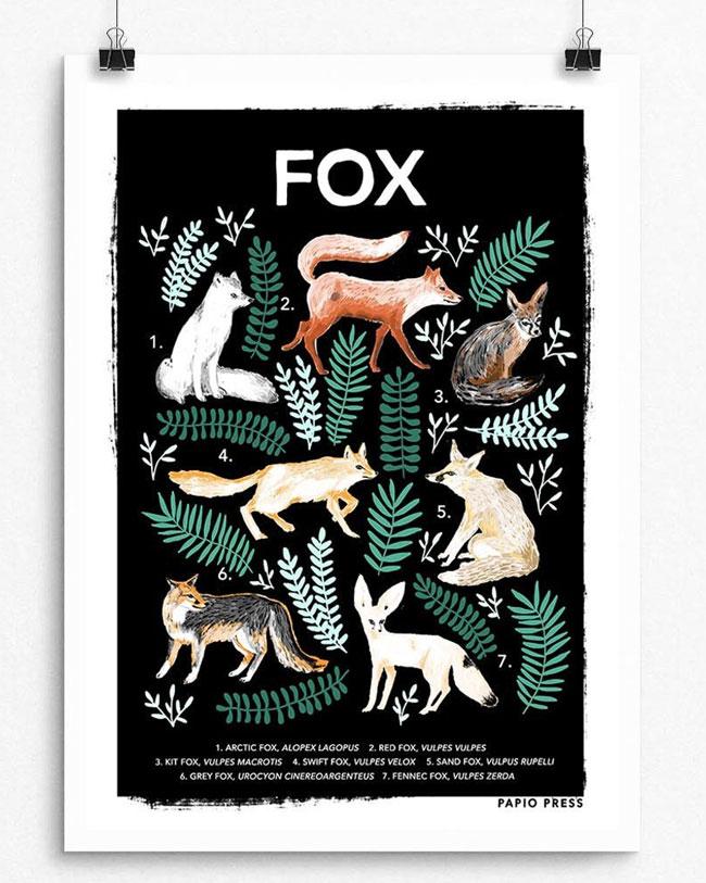 Fox Natural History Print by Papio Press