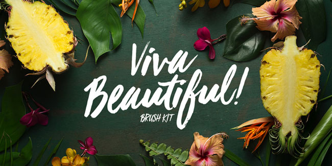 Viva Beautiful Brush Font by Cultivated Mind