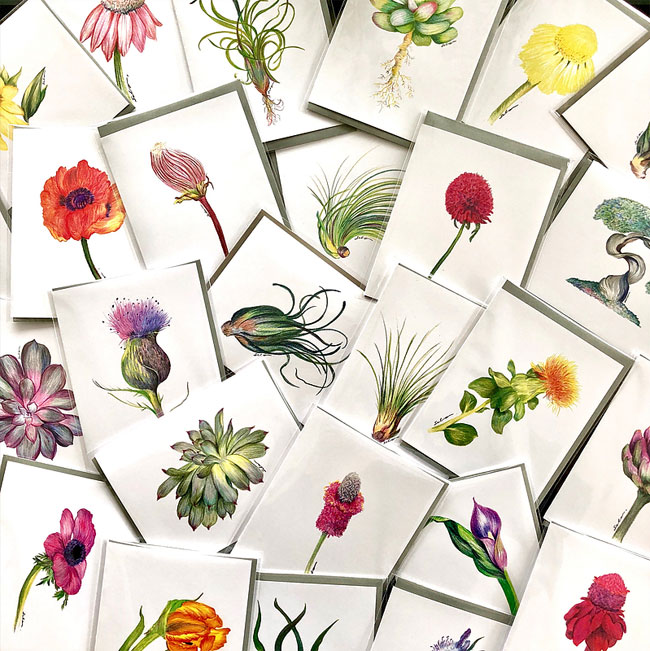 Beautiful Floral & Botanical Note Cards by Silvia Setrakian