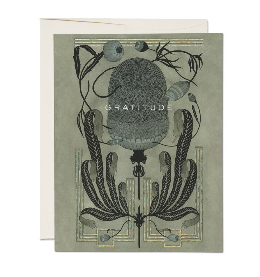 Botanical Art Nouveau-ish Cards by Marsha Robinson for Red Cap Cards